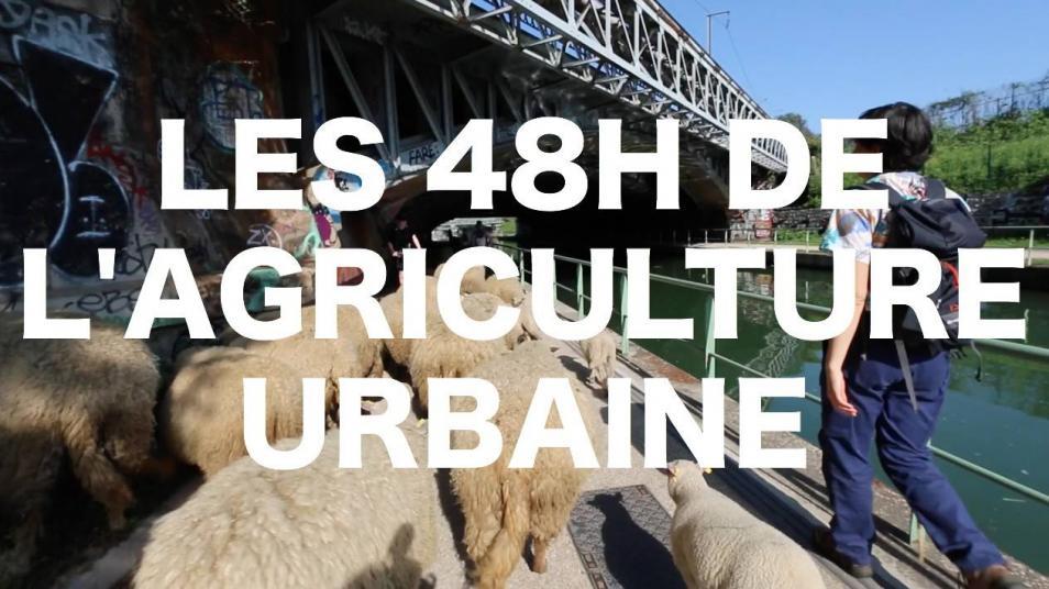 RETARD → Magazine - Les 48h de l'agriculture urbaine