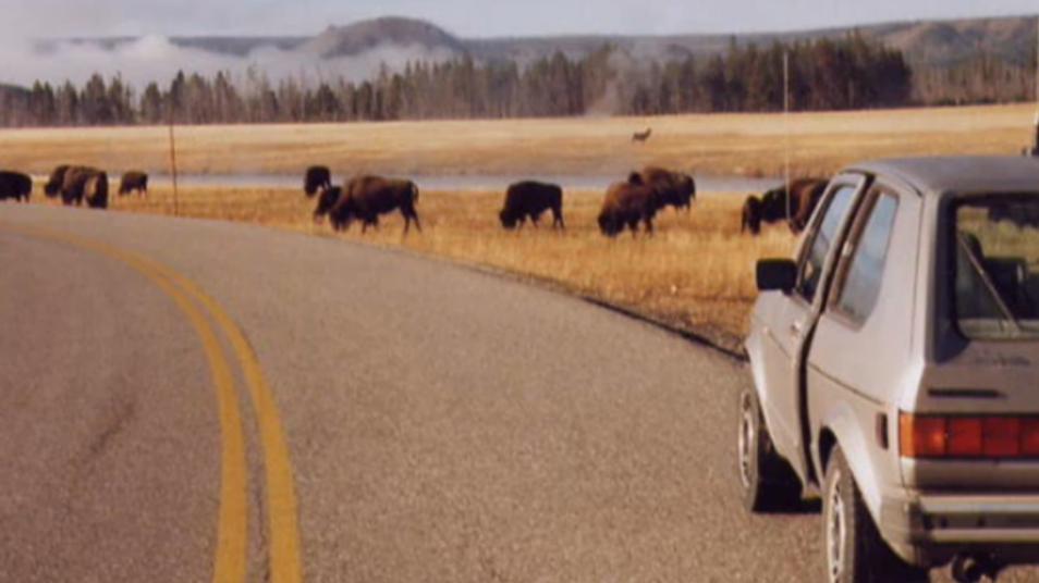 RETARD → Magazine - Tangerine Dream – Yellowstone Park  2/2