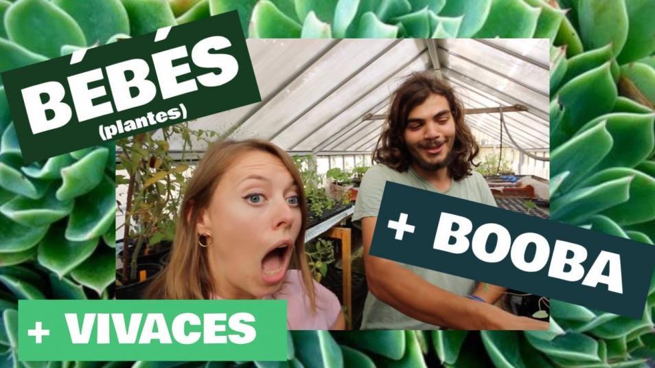 RETARD → Magazine - DIS MAMAN, COMMENT ON FAIT LES BÉBÉS (plantes) ?